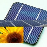 Wanted solar panels